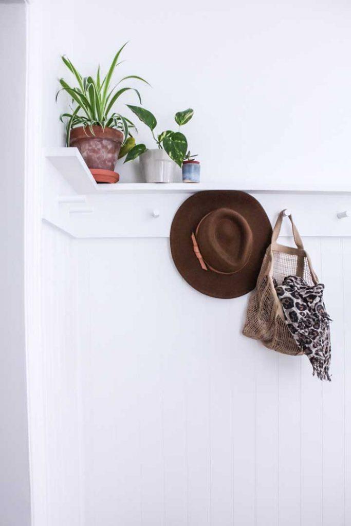 modern peg rail with shelf to store plants